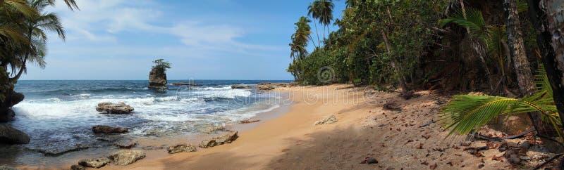 Panorama au-dessus de plage des Caraïbes image libre de droits