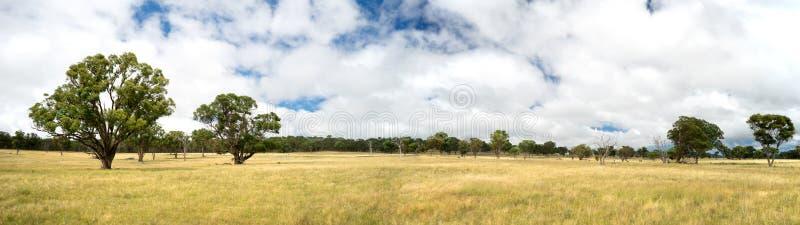 Panorama australiano della campagna fotografie stock