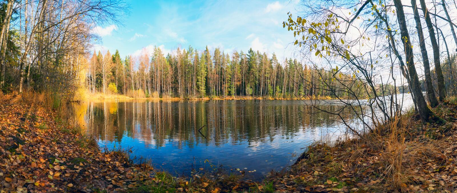 Panorama of the autumn coast with reflection in the water of a forest lake. Autumn landscape royalty free stock photo