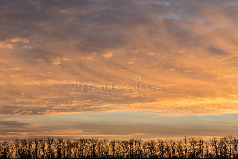 Panorama of the autumn forest. Against the background of a mystical orange sunset with cirrus clouds. Sunset against the backdrop of a forest on top of a hill royalty free stock photography