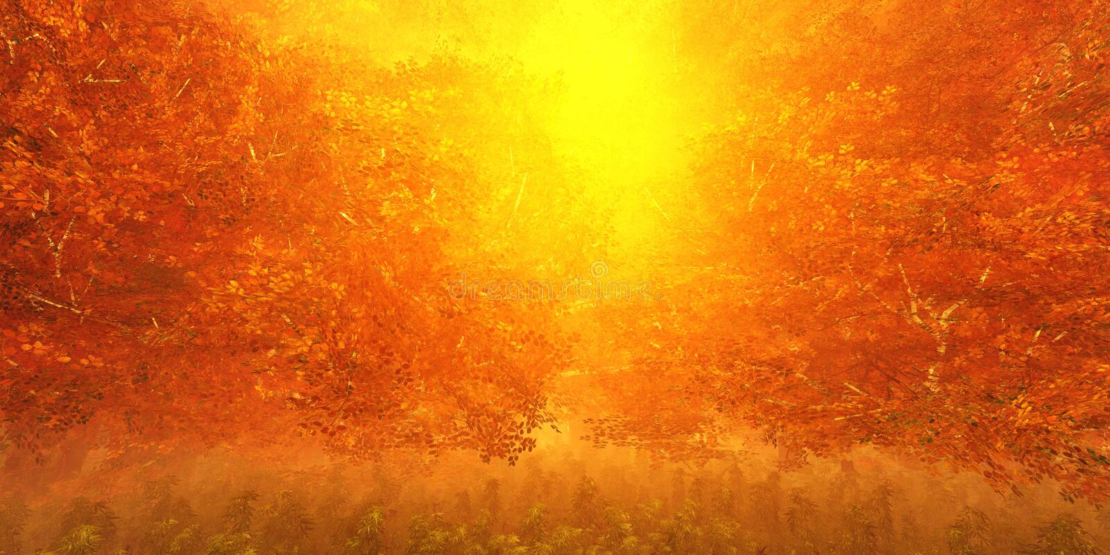 Panorama of the autumn landscape. The smoke in the forest in the morning. Tropical jungle in the fog. stock photo