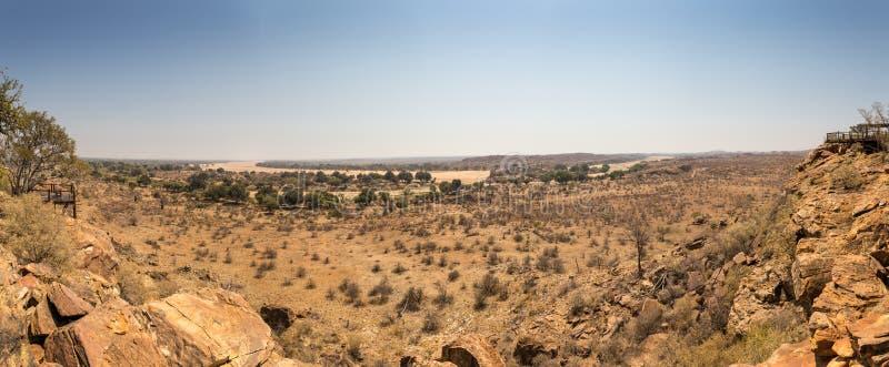 Panorama av ökenlandskapet med torr flodsäng i den Mapungubwe nationalparken, Sydafrika royaltyfri fotografi
