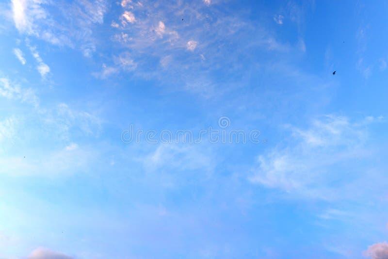 Panorama av bakgrunden för blå himmel arkivbild