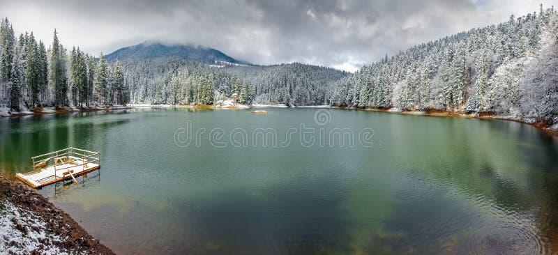 Panorama av bergsjön med skogen som täckas omkring med snö royaltyfri foto