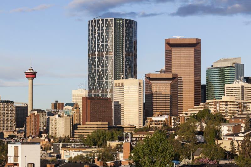 Panorama av Calgary arkivbild