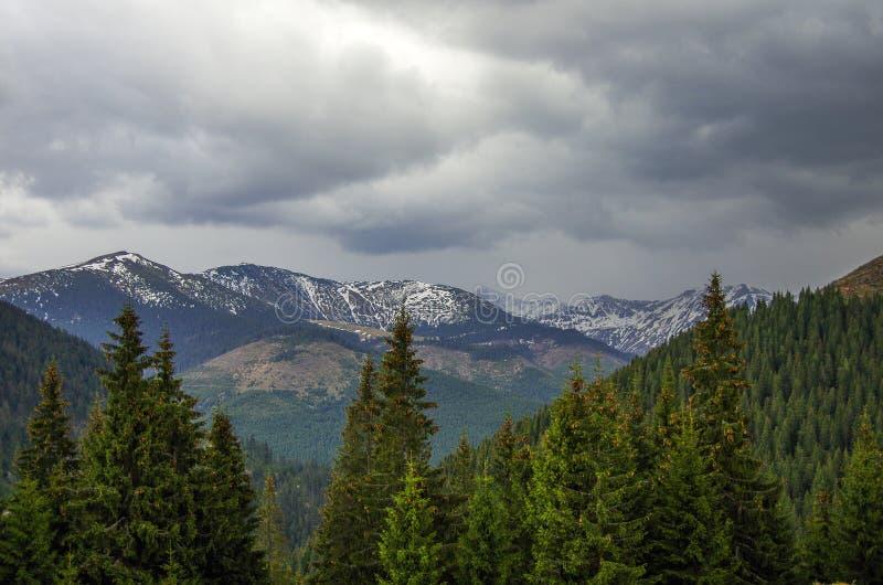 Panorama av Carpathians berg med stormig molnhimmel och sno arkivbild