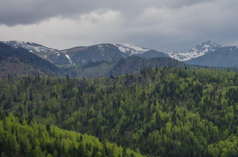 Panorama av Carpathians berg med stormig molnhimmel och sno arkivbilder