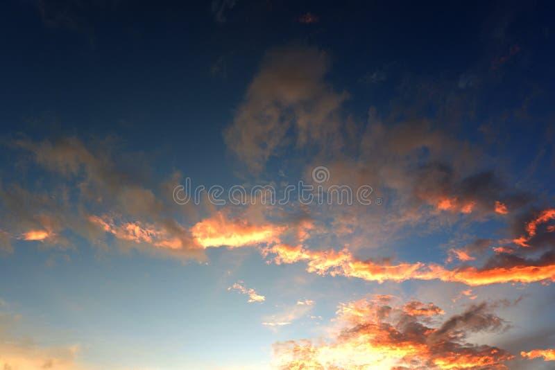 Panorama av den blåa himlen med moln royaltyfria bilder