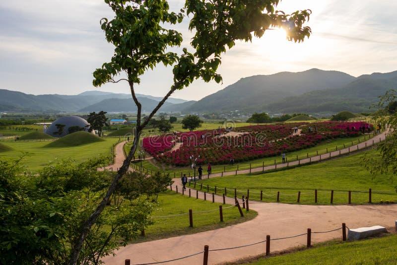 Panorama av den kungliga gravvalvet av konungen Gyeongdeok Gravhögkullekomplex i härligt landskap Geumseong-myeon Uiseong län, sö arkivbild