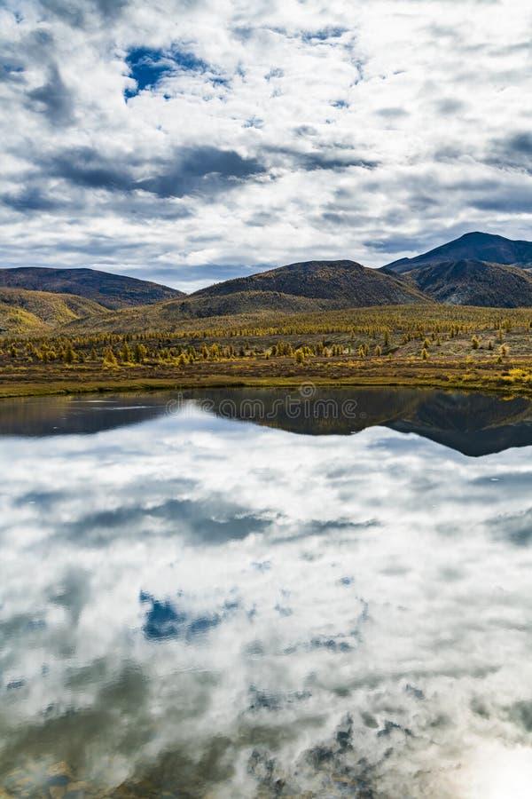 Panorama av den l?sa skogsj?n i h?sts?song, Ryssland royaltyfri fotografi