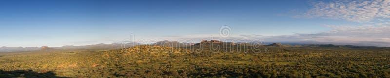 Panorama av den namibian grässlätten i regnsäsongen royaltyfri fotografi