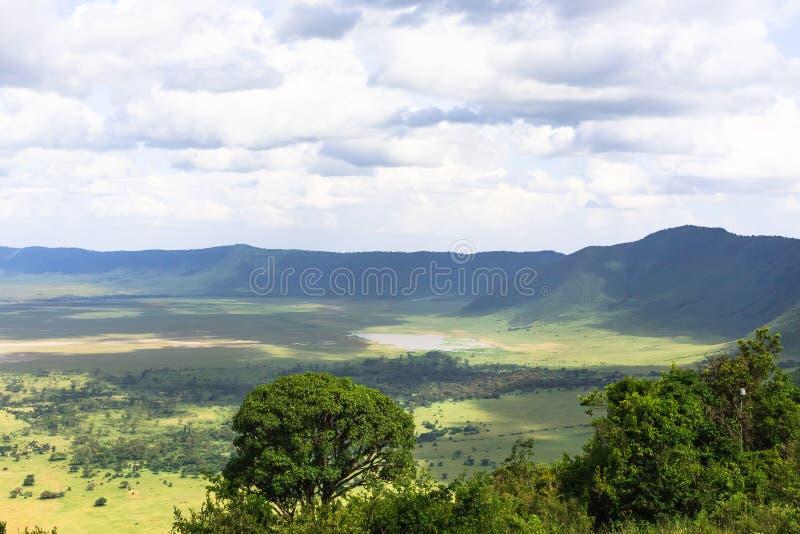 Panorama av den Ngorongoro krater Sjön är inom krater Tanzania Afrika fotografering för bildbyråer