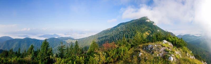 Panorama av det fantastiska sommarberglandskapet - Slovakien royaltyfri fotografi