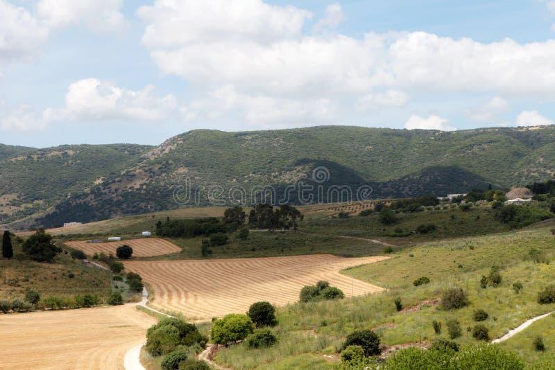Panorama av det Jezreel dallandskapet som besk?das fr?n den klippbrants- monteringen Nordliga Israel fotografering för bildbyråer