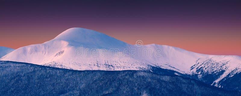 Panorama av det snöig toppmötet på vintermorgonen royaltyfri bild
