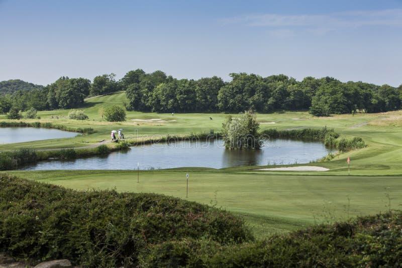 Panorama- av en golfbana royaltyfri bild
