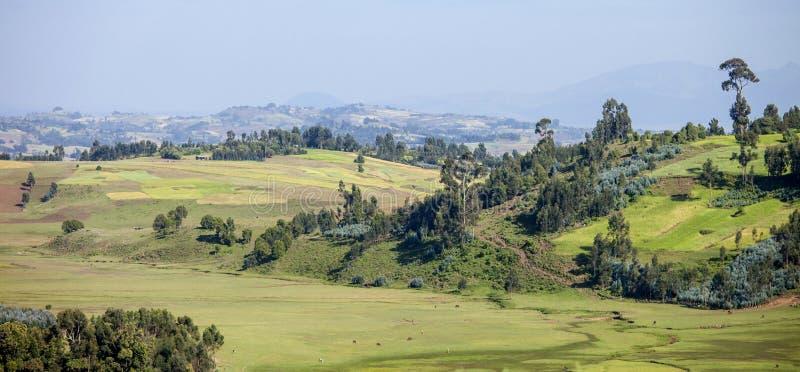 Panorama av Etiopien royaltyfri foto