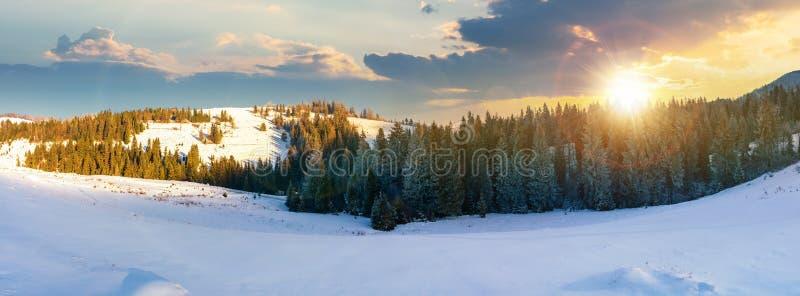 Panorama av ett härligt vinterlandskap på solnedgången arkivbild