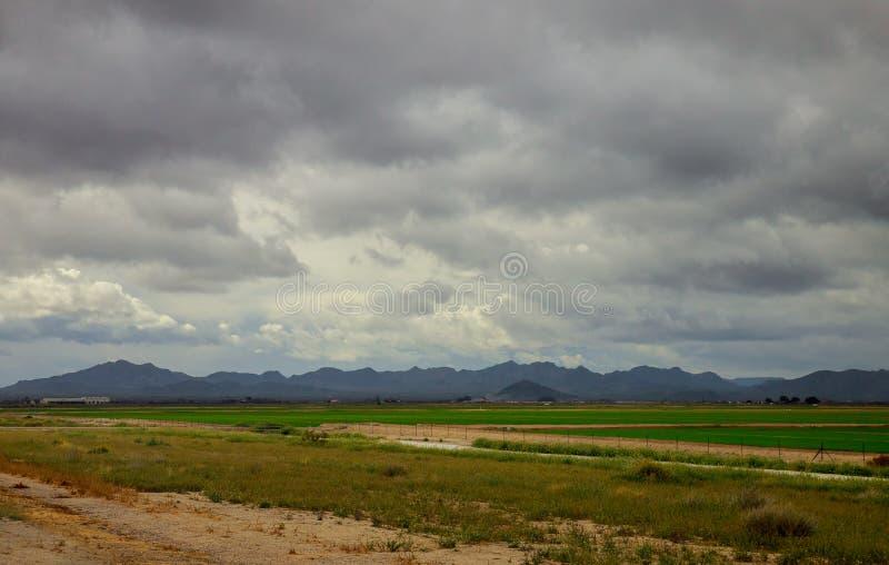 panorama av härlig bygd av det underbara vårlandskapet i berg gräs- fält och lantligt landskap royaltyfri foto