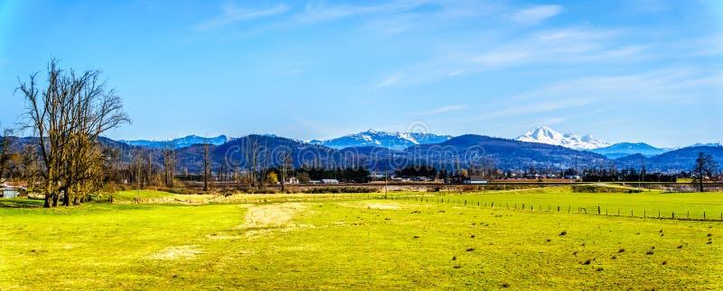 Panorama av jordbruksmark nära den Matsqui fördämningen på städerna av Abbotsford och beskickningen i British Columbia, Kanada fotografering för bildbyråer