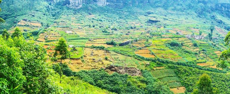 Panorama av lantgårdländerna royaltyfria foton