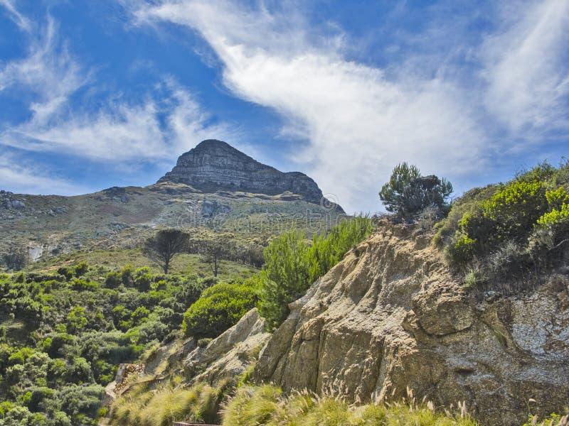 Panorama av Lion Head i Cape Town, Sydafrika arkivfoto