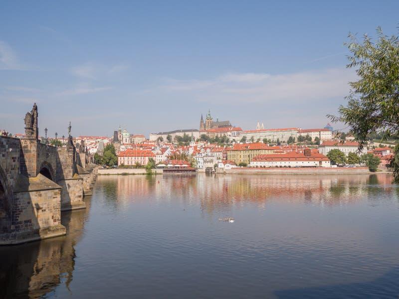 Panorama av Prague med en del av Charles Bridge och floden Tjeckisk huvudstad royaltyfria bilder