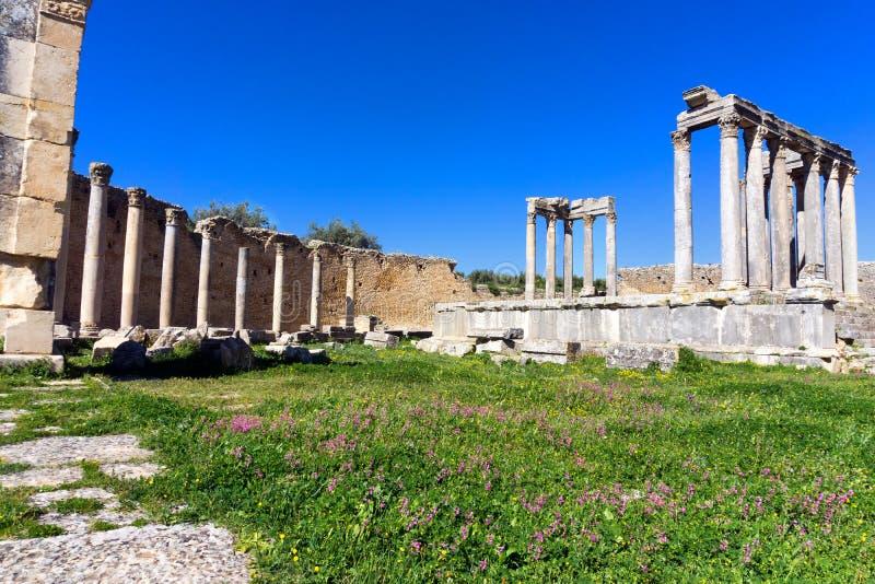 Panorama av templet av Juno i Dougga, Tunisien arkivbild