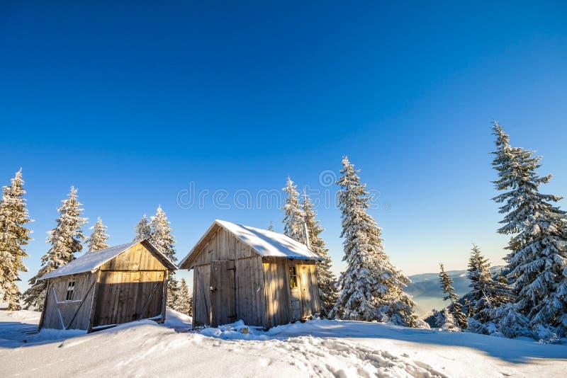 Panorama av vinterberg med hus av herdar Carpathia arkivbild