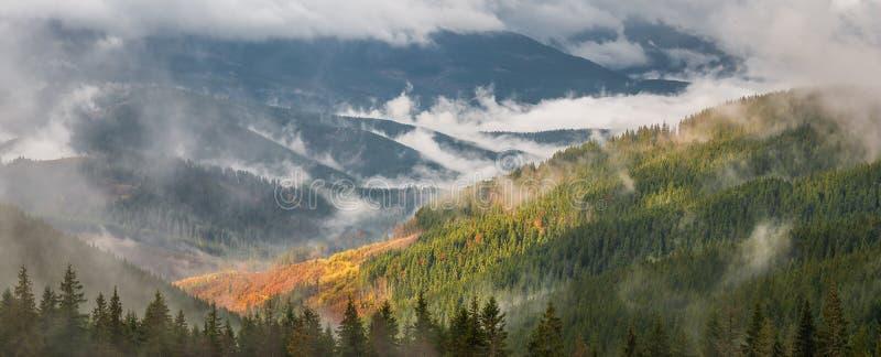 Panorama avec la forêt et les nuages image stock