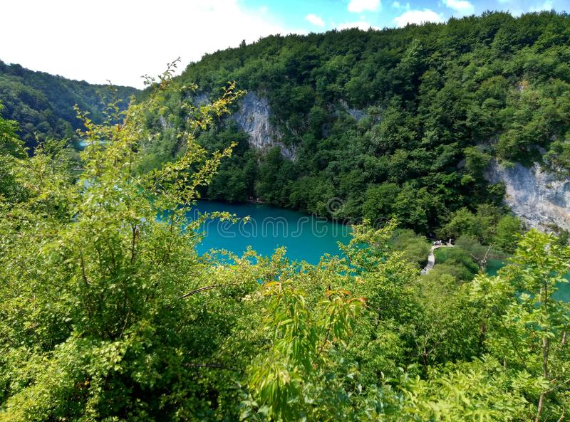 Panorama- avlägsen sikt på sjön med lysande azur-färgat vatten Träd och grönska omkring croatia lakesplitvice arkivfoton