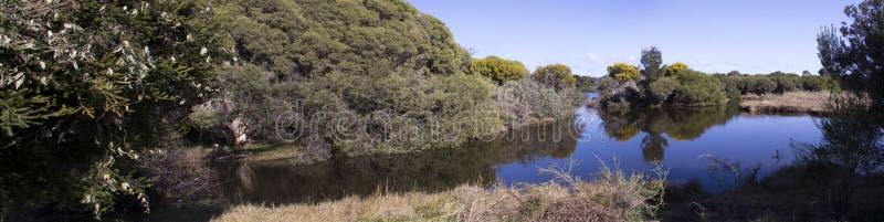 Panorama błękitny jezioro w Dużej bagna Bunbury zachodniej australii w wiośnie fotografia royalty free