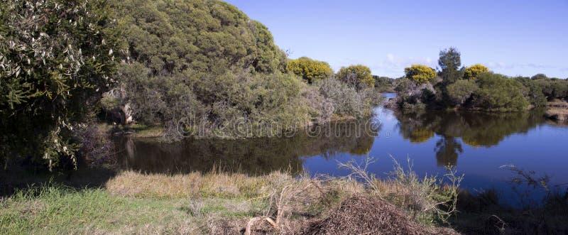 Panorama błękitny jezioro w Dużej bagna Bunbury zachodniej australii w wiośnie zdjęcia stock