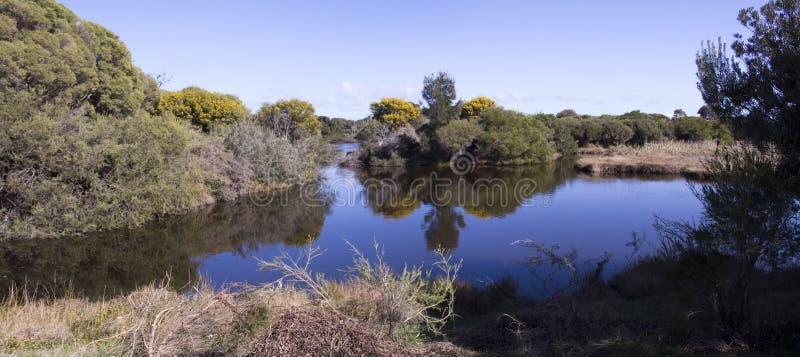 Panorama błękitny jezioro w Dużej bagna Bunbury zachodniej australii w wiośnie zdjęcie royalty free
