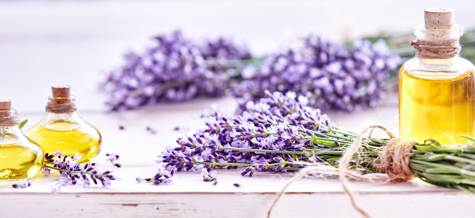 Panorama banner of lavender and essential oil royalty free stock image
