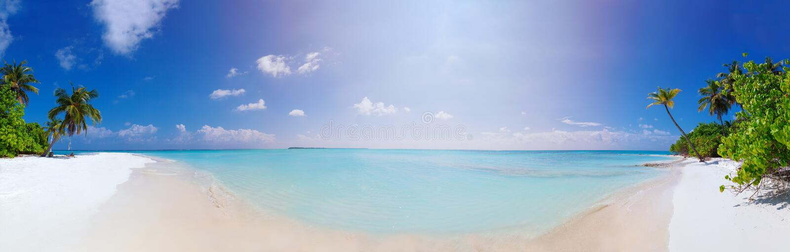 Panorama of Beach at Maldives island Fulhadhoo with white sandy idyllic perfect beach and sea and curve palm. Scenic panorama view of Wild idyllic Beach at stock photos