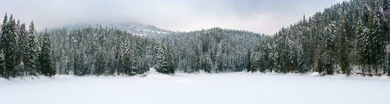 Panorama of beautiful winter mountainous landscape royalty free stock image
