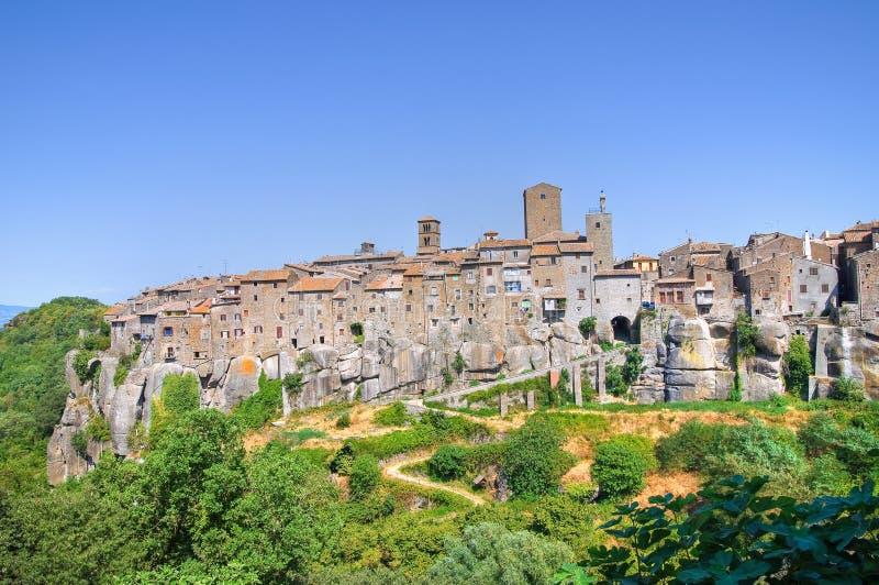 Panorama- beskåda av Vitorchiano. Lazio. Italien. royaltyfri bild