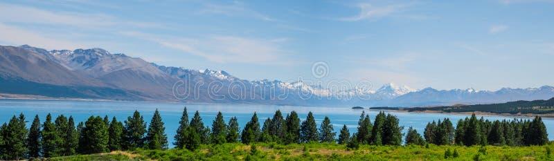 Panorama-bild av den vackra scenen Mt Cook på sommaren bredvid sjön med grönt träd och blå himmel Nya Zeeland I arkivbild
