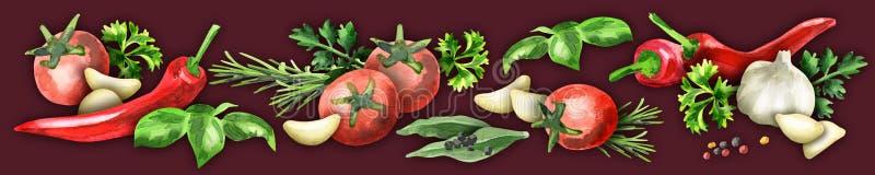 Panorama- bild av kryddor och örter vektor illustrationer