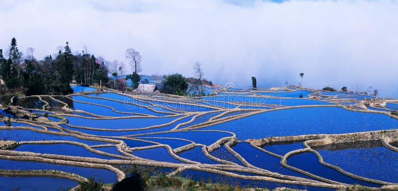 Panorama blu dei terrazzi del riso di yuanyang immagini stock libere da diritti
