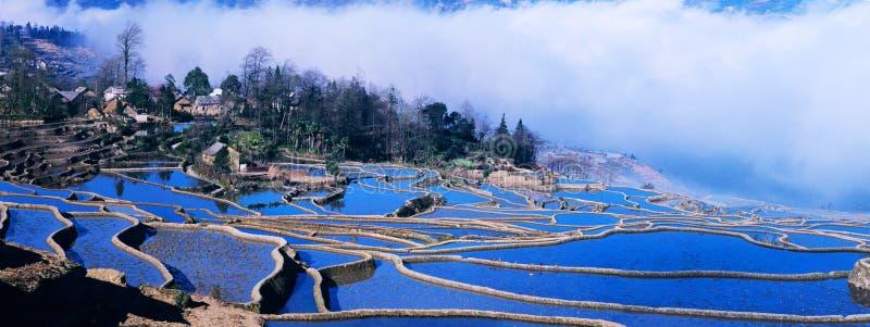 Panorama blu dei terrazzi del riso di yuanyang immagine stock