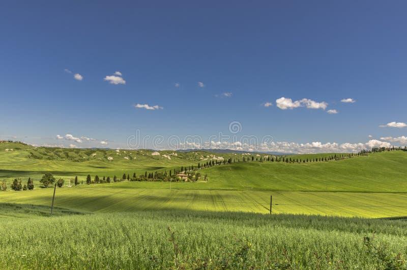 Panorama bonito da Creta Senesi em Itália fotografia de stock royalty free