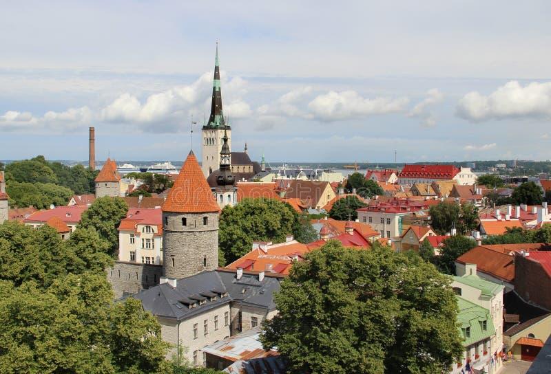 Panorama bonito de Tallin, Estônia imagem de stock