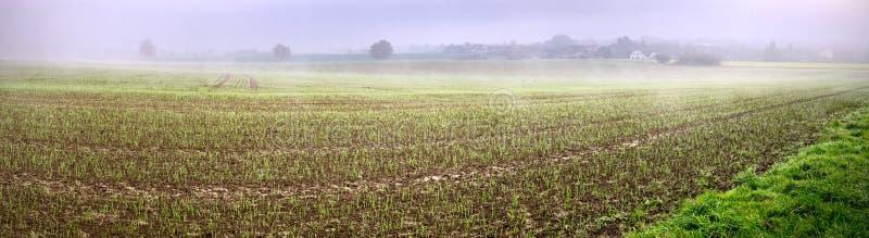Panorama brumoso del cultivo arable imagen de archivo libre de regalías