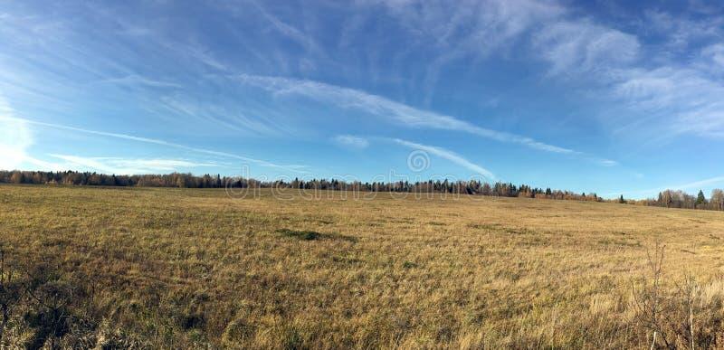 Panorama- bygdlandskap med fältet och skogen på långt under härlig blå himmel med många vita moln i guld- höst royaltyfri bild