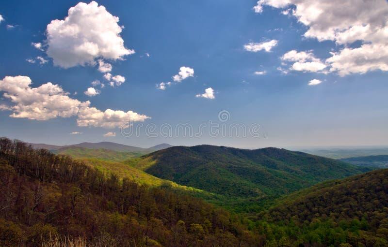 Panorama cênico da paisagem da montanha do parque nacional de Shenandoah imagem de stock