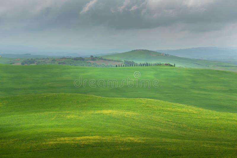 Panorama cênico da paisagem de Toscânia com Rolling Hills e campos da colheita na luz dourada da manhã foto de stock
