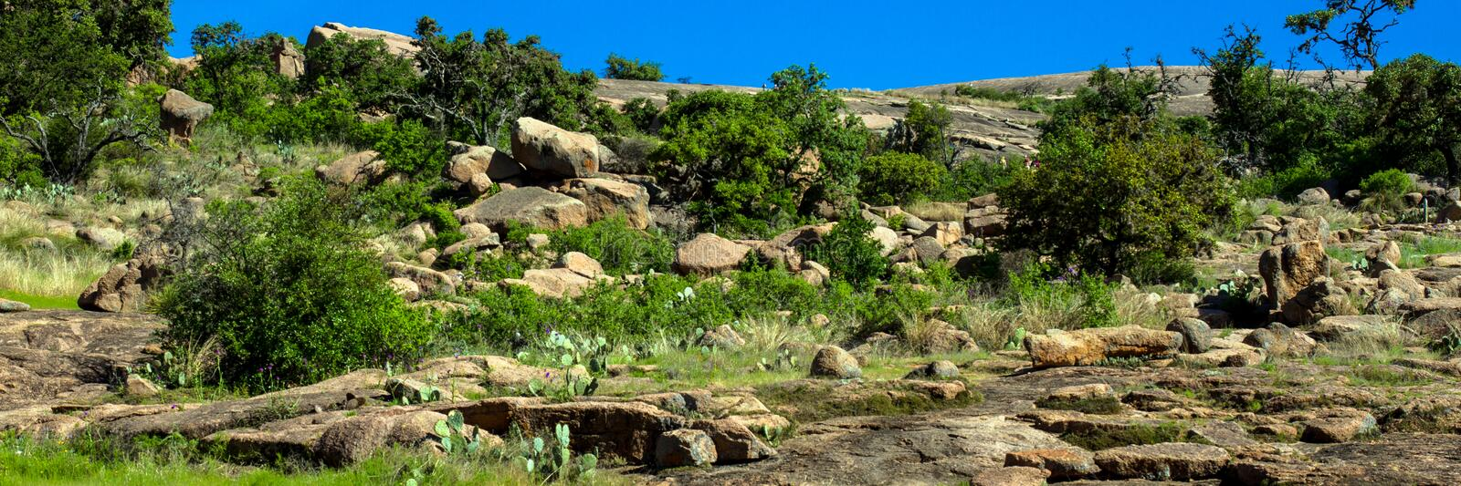 Panorama of cacti and rocks at Enchanted Rock State Natural Area in Texas. Panorama of cacti and rocks at Enchanted Rock State Natural Area near Fredericksburg royalty free stock photography
