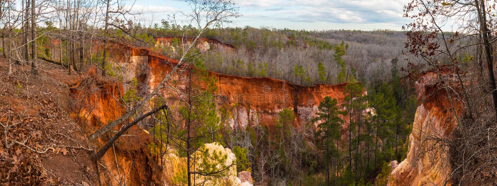 Panorama of canyons in Providence Canyon State Park, Georgia, USA stock photo
